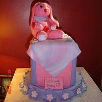 Edited_Bunny.jpg DUMMY CAKE FOR MY COUNTY FAIR