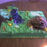Bug Cake   For a child's 6th birthday who is into bugs...