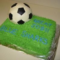 Soccer Ball Here's my attempt with the soccer ball cake. Stacked 9x13 cakes with buttercream. The ball is covered in patch-work fondant.
