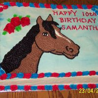 Horse To Match Partyware. This is a cake that I made for a horse party. I copied the horse from a party plate. I matched the colors up because it was supposed to be...