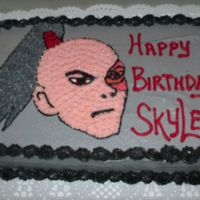 Skyler's Zuko Cake Chocolate cake with vanilla buttercream.