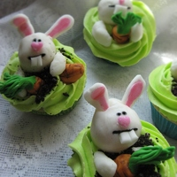 Bunnie Madness BC with fondant accents,. Saw some bunnies cupcakes on CC and this is my interpretation of them, Thank you for the inspiration !