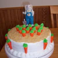 Carrots I made this cake for Easter dinner. It is a white cake with buttercream frosting. The carrots are gum with frosting on the top for the...