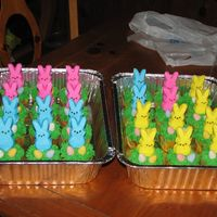 Easter Cupcakes   For my daughters kindergarden class