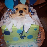 Puppy Surprise   Vanilla cake, krispies and fondant puppy face, fondant/gumpaste accents