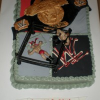 Wwe Wrestling Did this for my son's bday cake Nov09. Got alot of ideas from here! thx for looking.