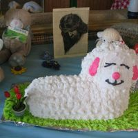 Lamby well this is a good picture beings that my first lamby fell on the floor right after it was all done..