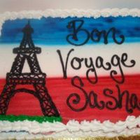 "Bon Voyage! Okay so i've never taken cake classes but i figured i would put this cake in this category because it was my frist ""special order..."