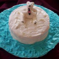 Polar Bear This cake is supposed to be the coca cola bear on an iceberg. This is the first cake I have done without explicit instructions on paper......