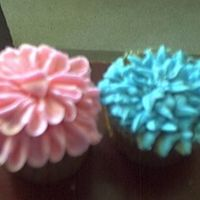 Flower Cupcakes this is a picture of the two remaining cupcakes i had left after making around 5 dozen of them,they were all decorated with bc and weremade...