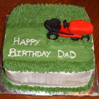 Lawnmower Cake I did this for my father-in-law's birthday. He is obsessed with mowing his lawn and making it look great so I thought this would be...