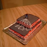 Barrets_Spider_Cake_002.jpg  I made this for my son's birthday it's the first party cake I've made I took the idea from the cake in my pictures that i...