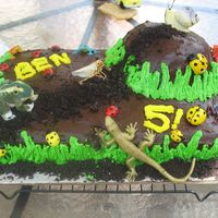 Bug Mountain  I made this for my other twin's birthday. He LOVES bugs!!! It was chocolate cake with chocolate frosting and crushed oreos for the...