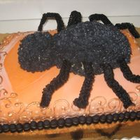 Halloween 2006 - Spider Cake 1 This is a cake I made for a Halloween party.