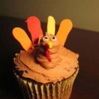 Turkey Cupcake   Buttercream head and body, with candy writer tail feathers.