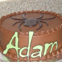 Adam's Halloween Birthday Cake   Chocolate cake w/ choc icing, choc transfer letters