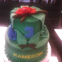 Tree Frog Cake 2 tier white cake covered in bc. Frogs and branches are fondant.