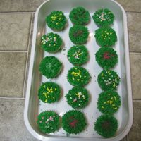 Cupcakes I DID THESE FOR MY DAUGHTERS PRE-SCHOOL CLASS. THEY WERE A BIG HIT.