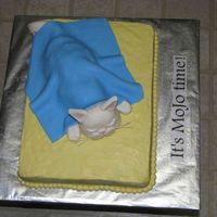 Sleeping Cat  This was a retirement cake for a woman who loves her cats (her cats are named Mo and Jo). The cake is covered in buttercream, the cat and...