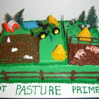 Farm Cake I made this for FIL's 81'st birthday! I really had fun making the haybales, LOL! But this picture clearly shows why I do NOT...