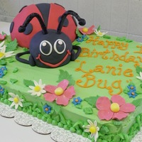 "Lady Bug This is a cake I did for a little girl's first birthday. Her nickname is ""Lanie Bug"" so they wanted a ladybug cake and this..."