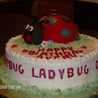 Ladybug Cake This cake was for my granddaughter 2nd birthday. Ladybug body is made out of cake using Sports Ball pan,and while the head is made out of...