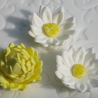 Gum Paste Mum And Daisy First time making mum & daisy using gumpaste. I just learned how to make these.