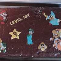 Super Mario Bros Characters For my son's 9th birthday, he couldn't decide what he wanted for a cake. He knew he wanted chocolate and then rattled off several...