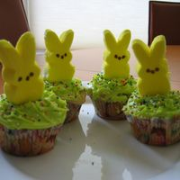 Easter Cupcakes Cupcakes for my son's daycare....I needed to do something simple and fun for the kids.