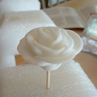 White Rose First time making anything with fondant. White roses for my brother's wedding cake. March 2007