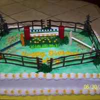 Equestrian Jumper yellow cake with buttercream icing. Shell border Red brick pillars are sugar cubes covered with royal icing. Bars are lollipop sticks....