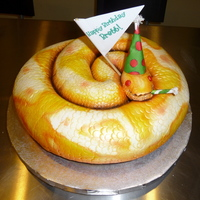 Albino Ball Python Birthday Snake
