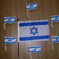 Israeli Flag Cookies   Cookies made for the Israel independence day in the shape of the Israeli Flag. The white part is color-flow and the blue is Royal icing.