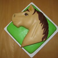 Horse Head Horse head cake for 10 yr olds b-day. Needed to feed 20 people. First cake I was paid for :-)