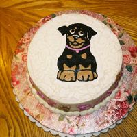 Rottie Cake   This was for a friend who loves her rotties!!!