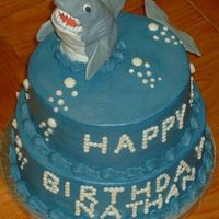 Shark Birthday Two tiered cake iced in buttercream with buttercream bubbles and writing. The shark is molded out of rice krispy treats and covered in...