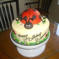 Brenna 10 in. base and 1/2 off sports ball pan for the lady bug. All white cake with buttercream filling. Buttercream icing with fondant accents....