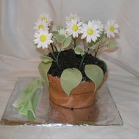 Flower Pot This was my final cake for the Wilton Gumpaste & Fondant class. It was the first time that I made a flower pot cake. The icing was way...