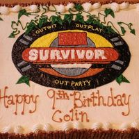 Survivor Cake A survivor cake for our son's party...actually had our last name in that orange rectangle when it was finished.