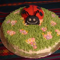 Lady Bug In A Garden The cake was a vanilla flavored one that is great for decorating because it is quite solid. The frosting was a vanilla buttercream. For my...
