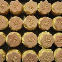 New Wilton Fondant Punch! My mom gave me a Wilton Fondant punch for Christmas. I tried it on these cupcakes for a baby shower.