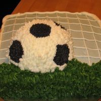 Soccer Goal   3D soccer ball on chocolate sheet cake. Buttercream frosting. Done for end of season children's soccer team party.