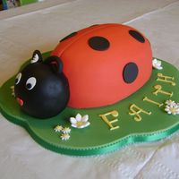 Ladybug Or Ladybird Body baked in oval pans, then carved. The head is RKT covered in fondant. BTW, in the UK they are called Ladybirds rather than bugs.