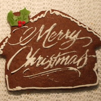 Merry Christmas Chocolate cookie with royal icing stencil..my first attempt at stenciling..happy icing!