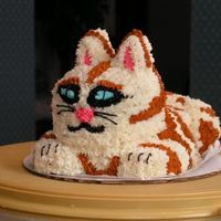 Here Kitty Kitty I did this cake for an uncle. He is a diabetic, so this cake is a sugar free applesauce/cinnamon Splenda recipe. I used the diabetic icing...