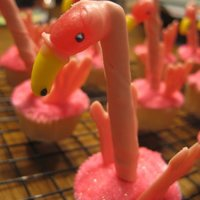 Flamingo Cupcakes Used What's New, Cupcake? as the inspiration.