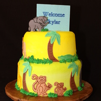 Jungle Baby   Did this cake using my new cricuit expression. Love my new toy.