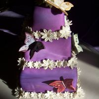 Butterfly Birthday Cake This mini-tiered cake is covered with white fondant, then airbrushed purple. We also airbrushed a mix of lemon extract and luster dust over...