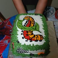 Aryand's Caterpillar My first BC transfer. This was for Ayarnd's 4th B-day. It had 14 little spiders and 6 little caterpillars made from BC on the cake. I...