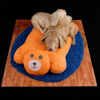 My Buddy My entry in the OSSAS. It made 3rd in the adult advanced novelty category. Puppies and bed are Madeira cake covered in fondant. The rug is...
